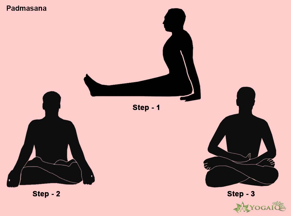 Padmasana Yoga step by step