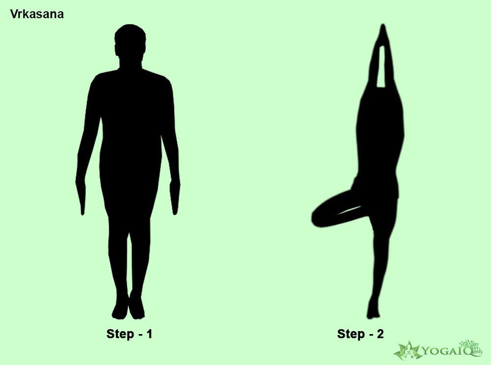 Vrkasana Yoga step by step