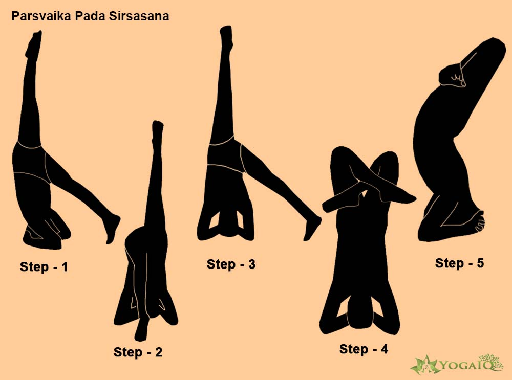 Urdhva Padmasana in Sirsasana Yoga step by step