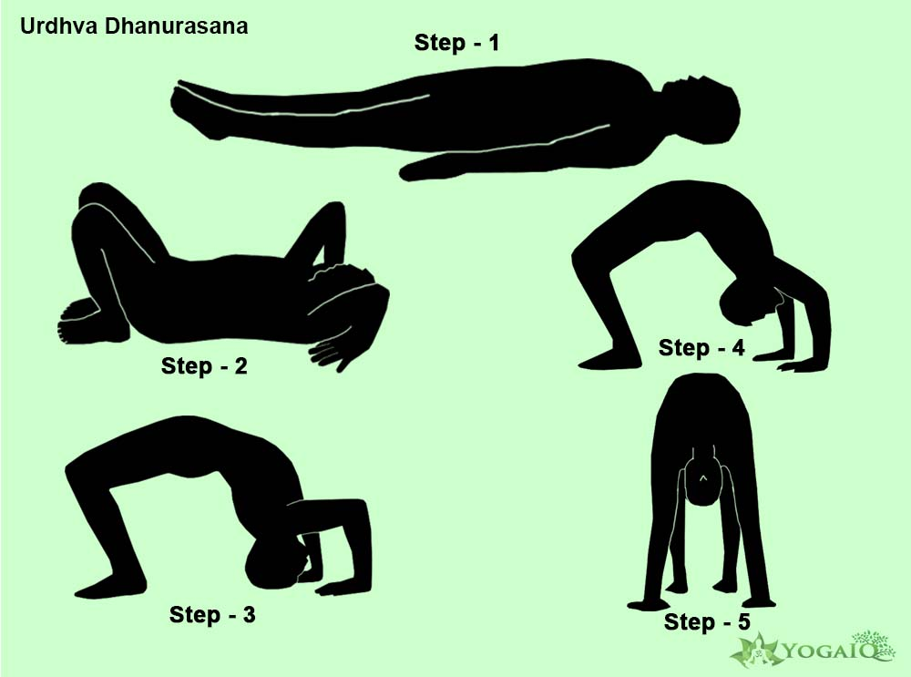 Urdhva Dhanurasana Yoga step by step