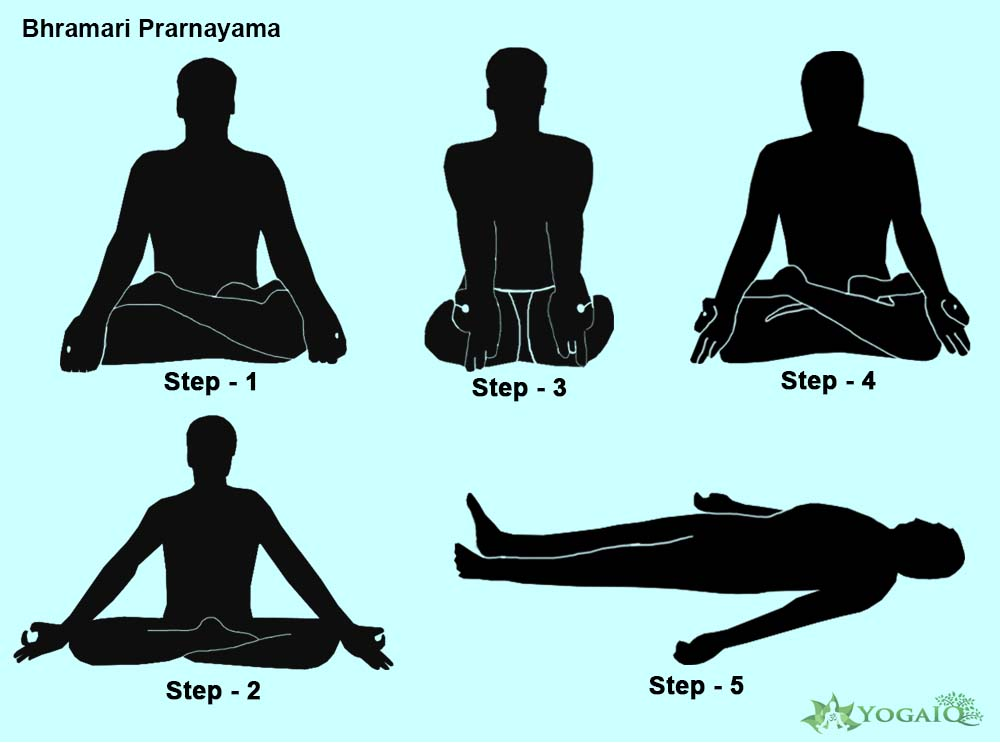 Bhramari Prarnayama Yoga step by step